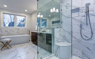 Best Frameless Shower Doors