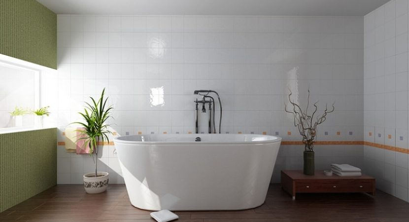 freestanding bathtub with shower